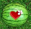 Watermelonnnn<3