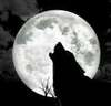 ♥You're My Full Moon♥