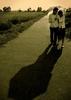 taken for a walk~