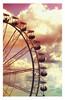 bring you on a ferris wheel ♥