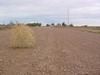 tumbleweed...