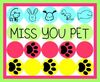 Miss You Pet